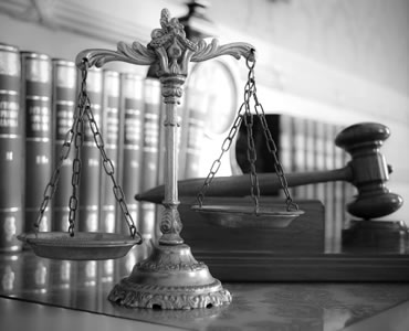 Administrative Appeals Tribunal and Federal Circuit Court Appeals